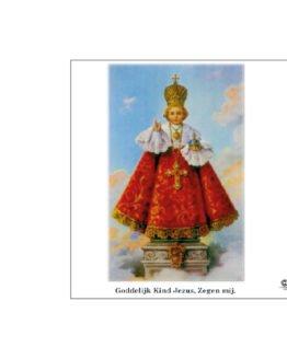 noveenkaars kindje jezus van Praag