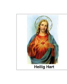 noveenkaars heilig Hart